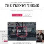 the-trendy-wordpress-theme