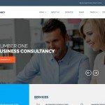 wp-consultancy-theme