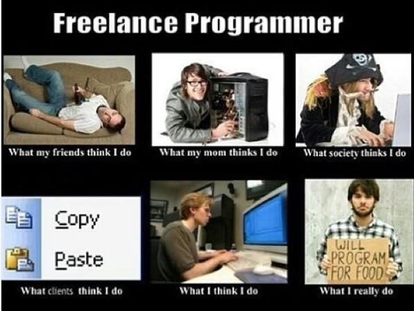 Freelancer Programmer