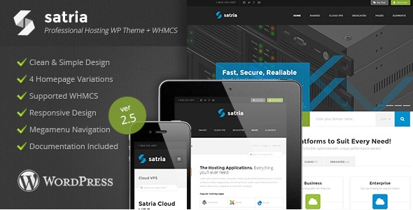 professional wordpress hosting theme