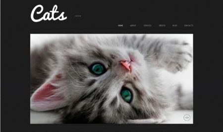 30+ Newly responsive Pet & Animal WordPress Themes